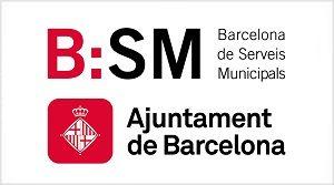 ACA Barcelona de Serveis Municipals S.A, (B:SM)
